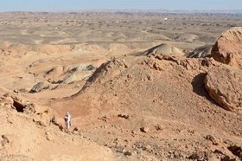 The author in the Negev Desert in Israel.